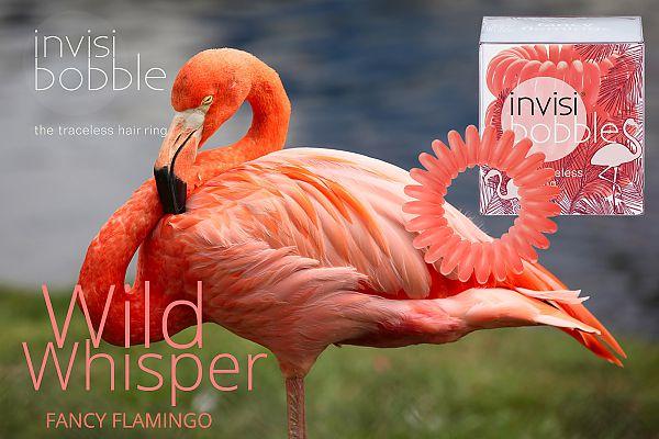 fancy-flamingo-invisibobble-gumki do włosów z serii lato 2015-wild-whisper